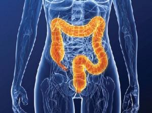 Regular Colon Screening Prevents Cancer