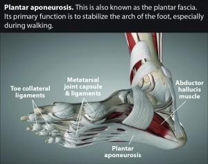 Treating Chronic Foot