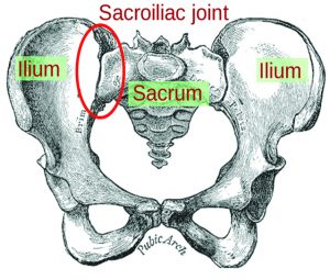 Sacroiliac (SI) Joint Dysfunction