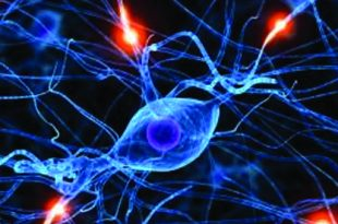 Depression AND neurotransmitters