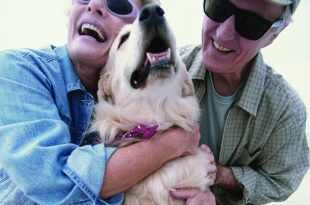 Helping Your Pets Age Healthfully