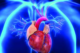 If You Have AFib, Your Risk of Stroke Is 5X Greater A Cutting-Edge Procedure Can Save Your Life