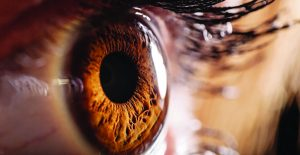 Improving Vision Health With National Glaucoma Awareness Month