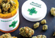 4 Things You Should Know About Medical Marijuana
