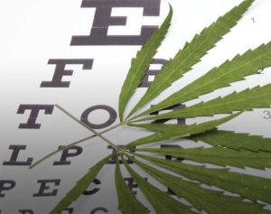 Glaucoma & Vision Loss:  Alternative Treatment