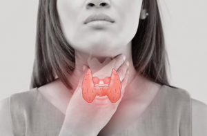 Thyroid and Your Weight
