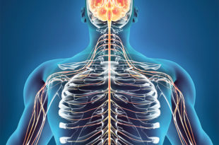 Nerve Damage and Diagnosis: Getting you Accurate Treatment and Relief
