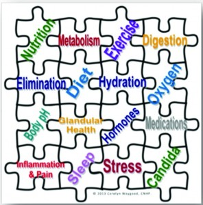Solving the Weight Loss PuzzleSolving the Weight Loss Puzzle