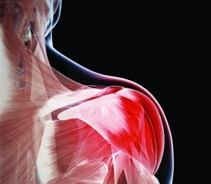 Muscle Activation Techniques