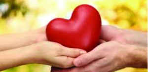 What you may not know about your heart