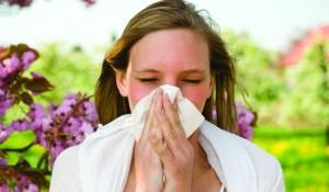 Breeze Through Allergy Season with Proper Care