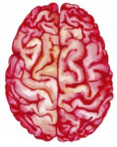 What is Neurology,