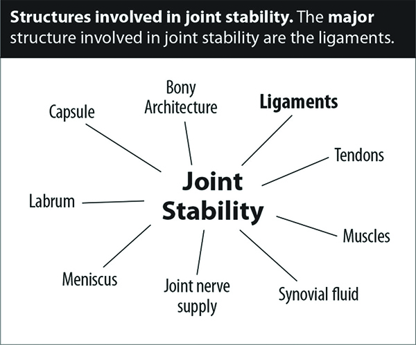Joint Instability